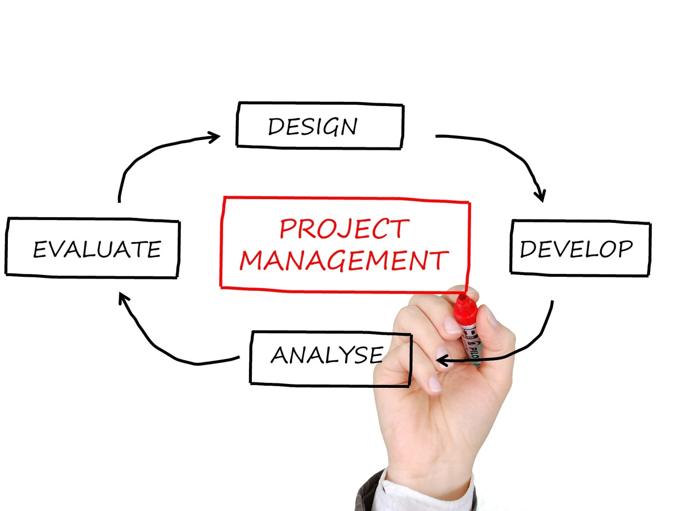 Project Management Sample Assignment