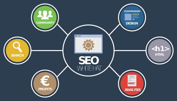 SEO Local Business India